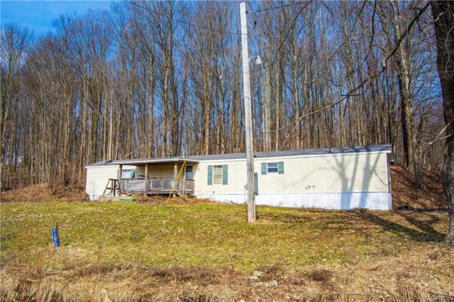 11956 Pope Road, Conewango, NY 14772 (MLS #B1174869) :: BridgeView Real Estate Services