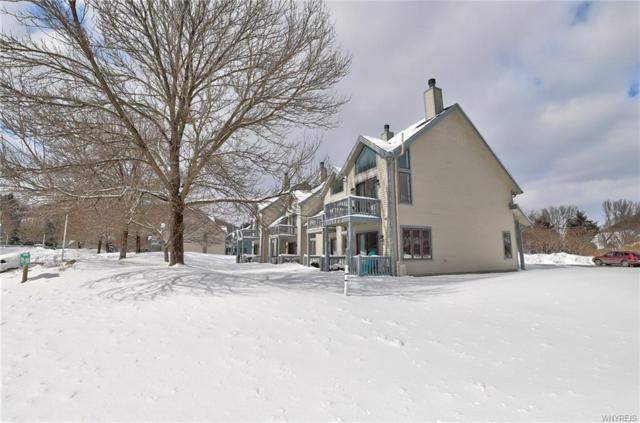 191 Wildflower Apts, Ellicottville, NY 14731 (MLS #B1176810) :: BridgeView Real Estate Services