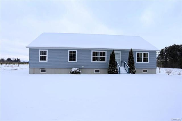 13986 North Division Road, Collins, NY 14034 (MLS #B1176820) :: The Chip Hodgkins Team