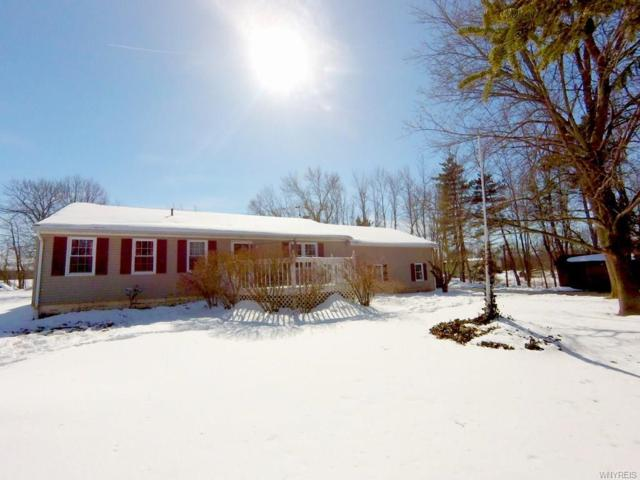 11330 Slade Road, Ridgeway, NY 14103 (MLS #B1177363) :: BridgeView Real Estate Services