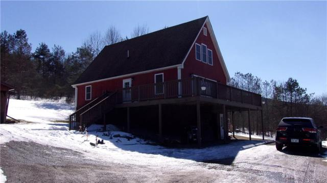 3251 Proctor Road, Wellsville, NY 14895 (MLS #B1177677) :: BridgeView Real Estate Services