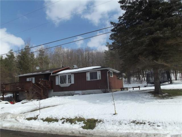 9970 Skyline Drive, Machias, NY 14042 (MLS #B1177729) :: Robert PiazzaPalotto Sold Team