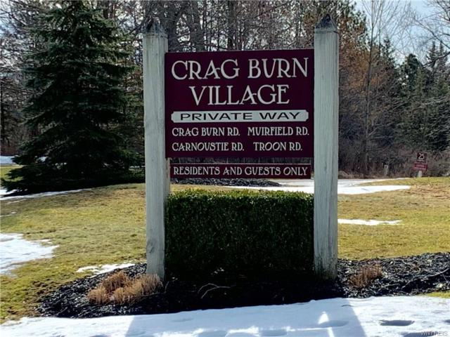V/L Crag Burn Drive, Elma, NY 14059 (MLS #B1177930) :: Updegraff Group