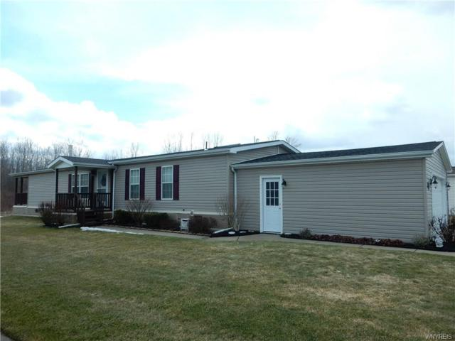 221 Golden Pond, Newstead, NY 14001 (MLS #B1178835) :: BridgeView Real Estate Services