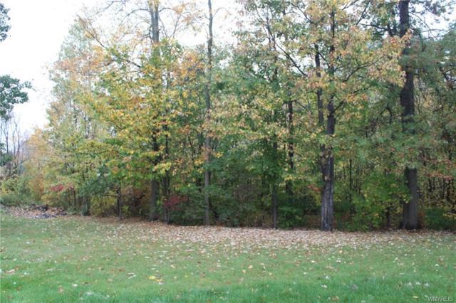 3137 Krueger Road, Wheatfield, NY 14120 (MLS #B1179117) :: Updegraff Group