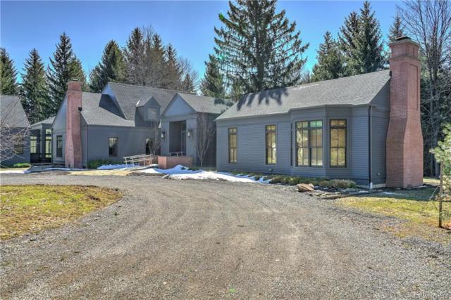 12691 Kern Road, Concord, NY 14141 (MLS #B1180029) :: Updegraff Group