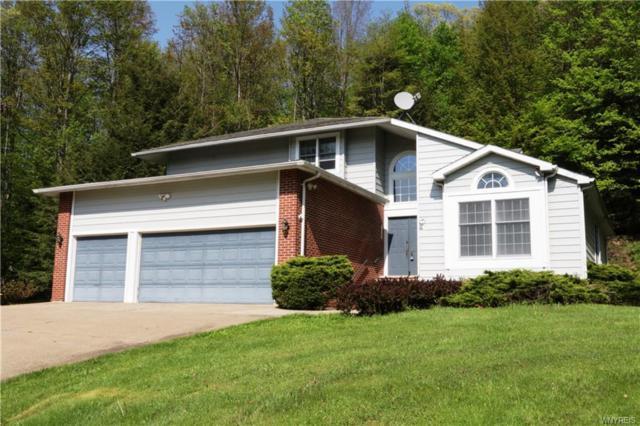2468 Oakwood Terrace, Allegany, NY 14706 (MLS #B1180436) :: Robert PiazzaPalotto Sold Team