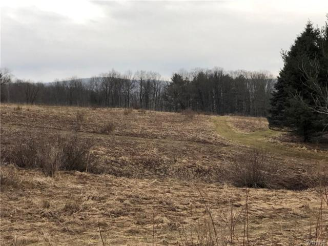 0 Sommerville Valley Road, Ellicottville, NY 14731 (MLS #B1183539) :: BridgeView Real Estate Services