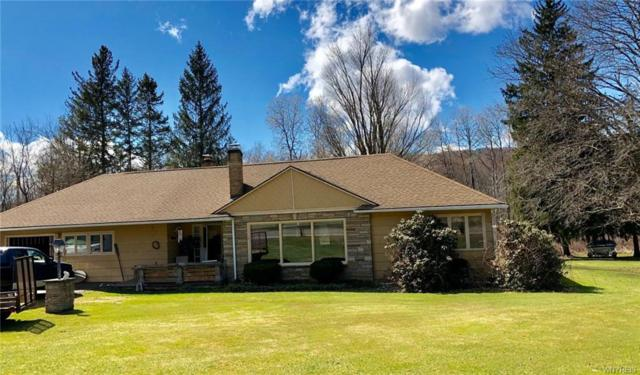 3223 Route 16 N, Hinsdale, NY 14760 (MLS #B1184261) :: Updegraff Group
