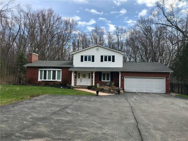 330 Buffalo Road, Aurora, NY 14052 (MLS #B1184945) :: BridgeView Real Estate Services