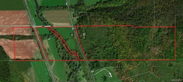 0 Nys Route 16, Franklinville, NY 14737 (MLS #B1184993) :: The CJ Lore Team | RE/MAX Hometown Choice
