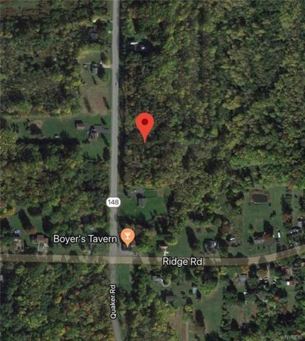 3343 Quaker Road, Hartland, NY 14067 (MLS #B1185513) :: The Chip Hodgkins Team