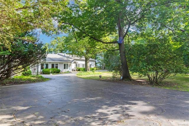 6666 Lake Shore Road, Evans, NY 14047 (MLS #B1185611) :: Robert PiazzaPalotto Sold Team