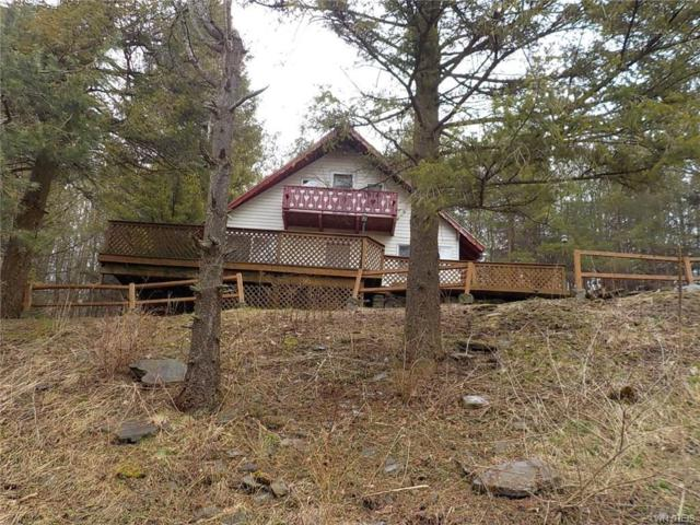 6982 Poverty Hill Road, Ellicottville, NY 14731 (MLS #B1186047) :: BridgeView Real Estate Services