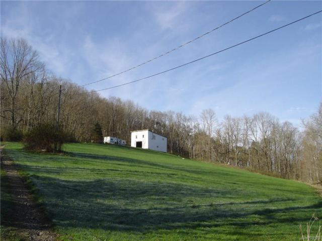 3445 Wolf Run Road, Clarksville, NY 14727 (MLS #B1186577) :: 716 Realty Group