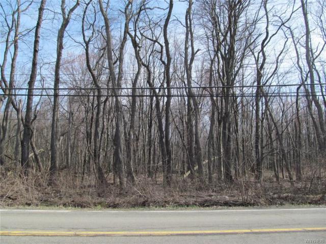V/L Lake Shore Road, Evans, NY 14006 (MLS #B1186986) :: Robert PiazzaPalotto Sold Team