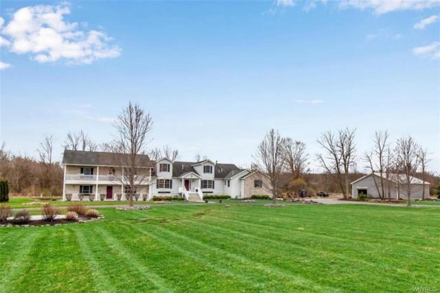 11973 Stage Road, Newstead, NY 14001 (MLS #B1187177) :: Robert PiazzaPalotto Sold Team