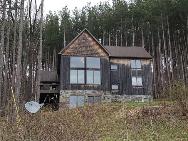 6864 Horn Hill Road, Ellicottville, NY 14731 (MLS #B1187421) :: 716 Realty Group