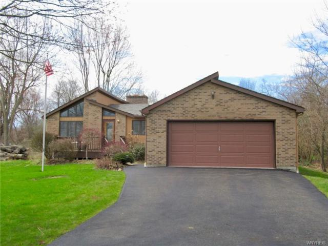 3660 E East River Road, Grand Island, NY 14072 (MLS #B1187713) :: Robert PiazzaPalotto Sold Team