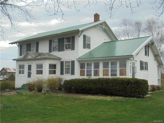 3311 Randall Road, Wilson, NY 14131 (MLS #B1187762) :: 716 Realty Group