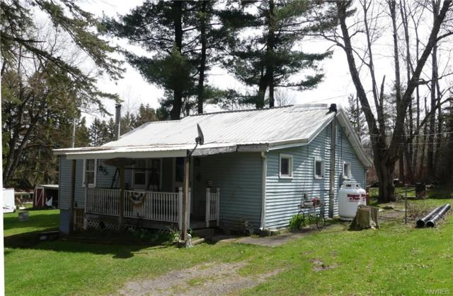 49 Wildemere Drive, Java, NY 14009 (MLS #B1188908) :: The Chip Hodgkins Team