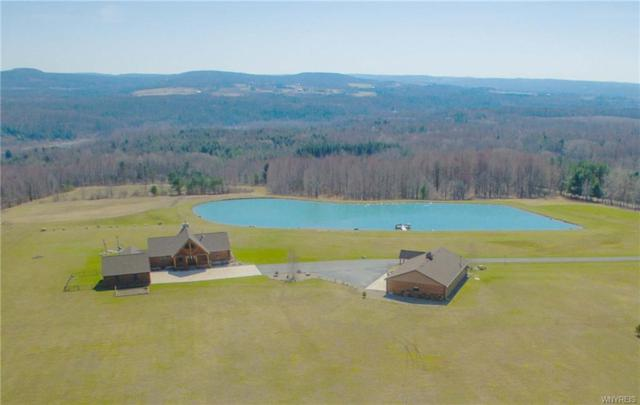 12929 Pratham Road, Sardinia, NY 14141 (MLS #B1190614) :: The Chip Hodgkins Team