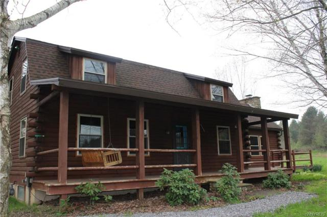 6663 Route 219 N, Ellicottville, NY 14731 (MLS #B1191108) :: Updegraff Group
