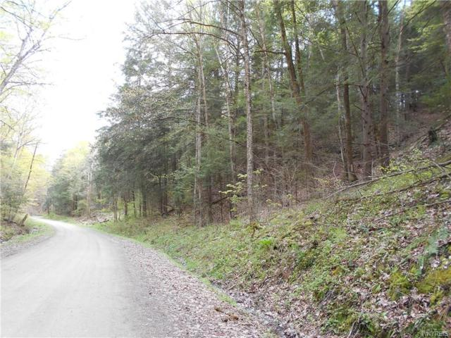 0 Dugway Road, Hume, NY 14735 (MLS #B1194020) :: 716 Realty Group