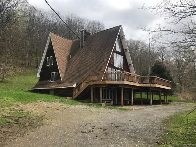 6044 Sugartown Road, Ellicottville, NY 14731 (MLS #B1194530) :: Updegraff Group