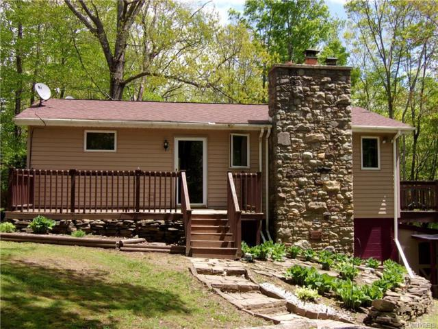 5749 Comfort Hollow Road, Scio, NY 14880 (MLS #B1194955) :: Updegraff Group