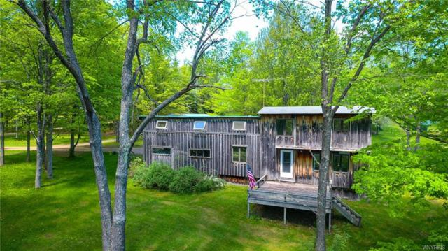 1873 Hawks Road, Independence, NY 14806 (MLS #B1195929) :: The Chip Hodgkins Team