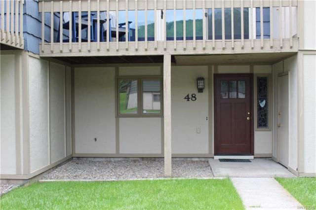 48 Alpine, Ellicottville, NY 14731 (MLS #B1197421) :: Robert PiazzaPalotto Sold Team