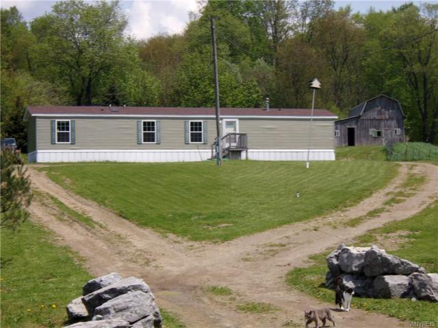 4064 Bakerstand Road, Franklinville, NY 14101 (MLS #B1198407) :: The Chip Hodgkins Team