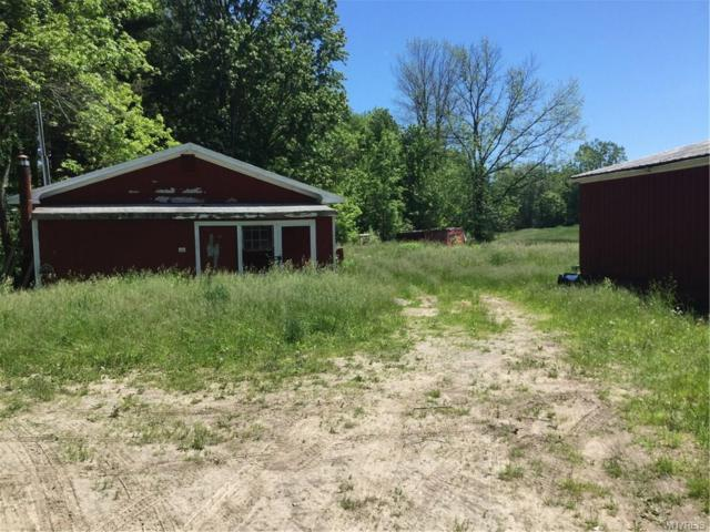 2437 Johnson Creek Road, Hartland, NY 14012 (MLS #B1199544) :: Updegraff Group
