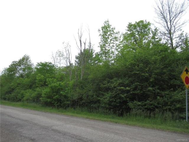 VL Bush Road, Grand Island, NY 14072 (MLS #B1199730) :: 716 Realty Group