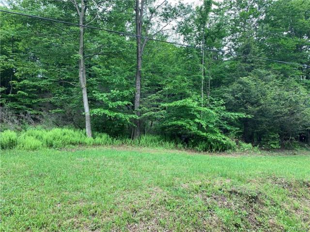 5 Deer Pond Acres, Orangeville, NY 14569 (MLS #B1200690) :: MyTown Realty