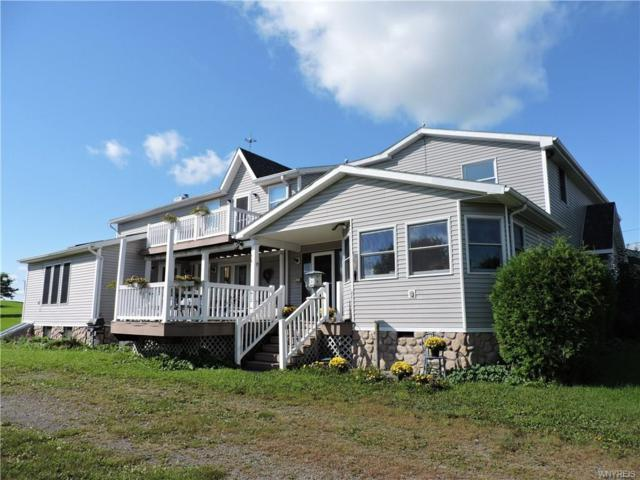 11069 Allen Road, Sardinia, NY 14055 (MLS #B1200924) :: The Chip Hodgkins Team