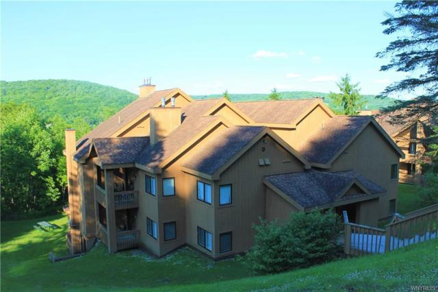 202 D Snowpine Village 5915, Great Valley, NY 14741 (MLS #B1201285) :: Robert PiazzaPalotto Sold Team