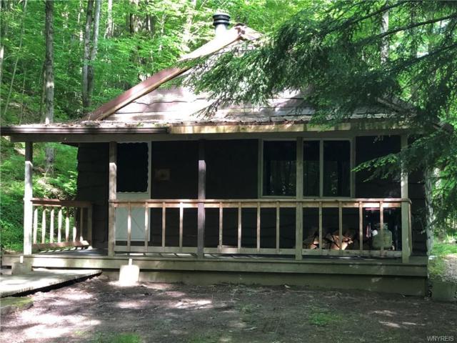 867 Lippert Hollow Road, Allegany, NY 14706 (MLS #B1201298) :: The Glenn Advantage Team at Howard Hanna Real Estate Services
