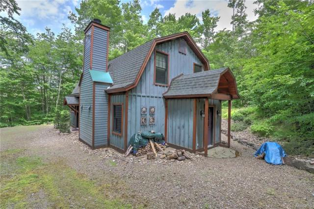 5799 G Us Route 219, Great Valley, NY 14741 (MLS #B1202128) :: Robert PiazzaPalotto Sold Team