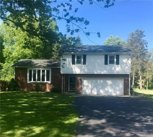 661 Stolle Road, Elma, NY 14059 (MLS #B1202203) :: Robert PiazzaPalotto Sold Team