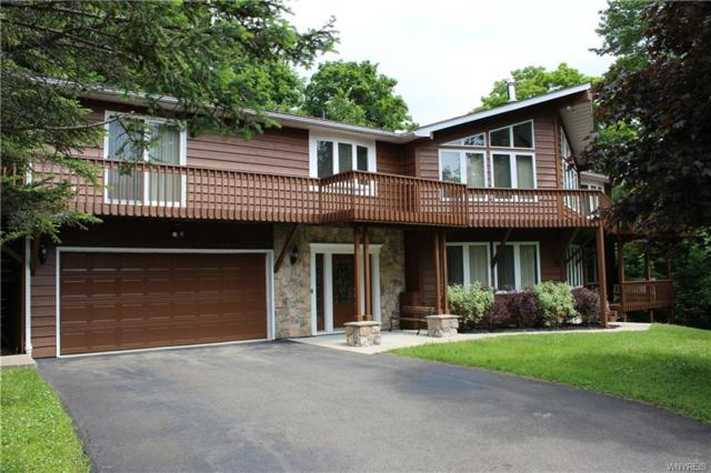 6625 Thistle Road, Ellicottville, NY 14731 (MLS #B1203080) :: The Chip Hodgkins Team