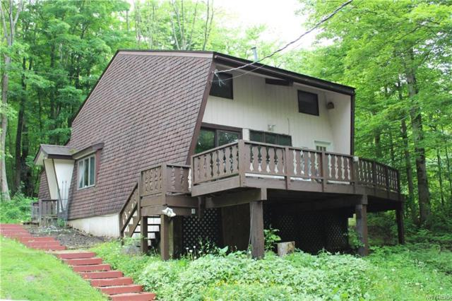 5504 Bryant Hill Road, Ellicottville, NY 14731 (MLS #B1203106) :: The Chip Hodgkins Team