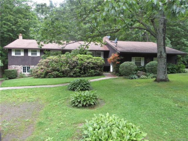 1181 White Hill Road, Alma, NY 14715 (MLS #B1203860) :: 716 Realty Group