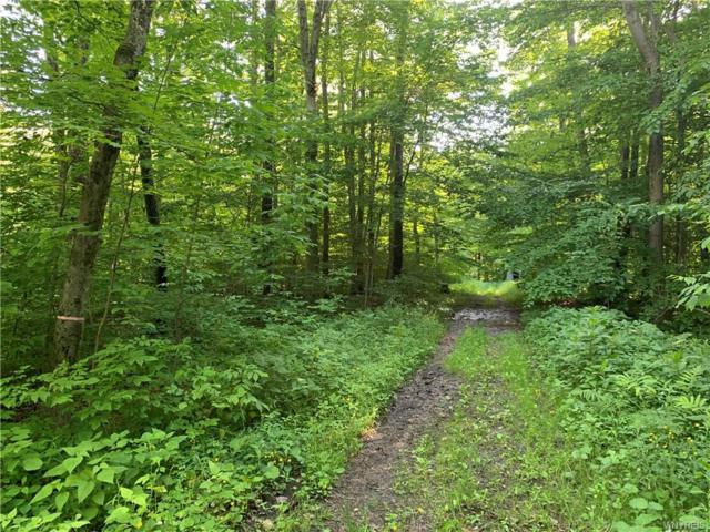 24 Meadowlark Lane, Orangeville, NY 14569 (MLS #B1204398) :: MyTown Realty