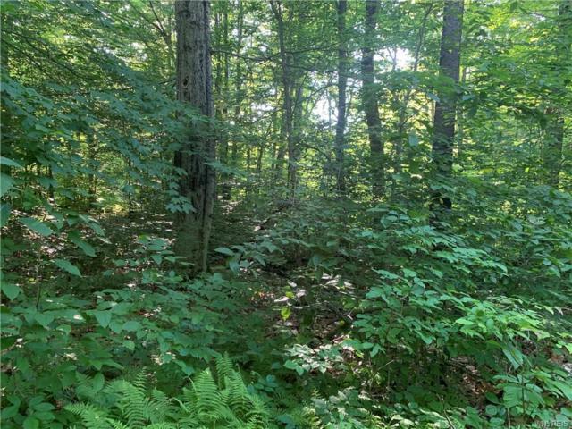 25 Meadowlark Lane, Orangeville, NY 14569 (MLS #B1204400) :: MyTown Realty