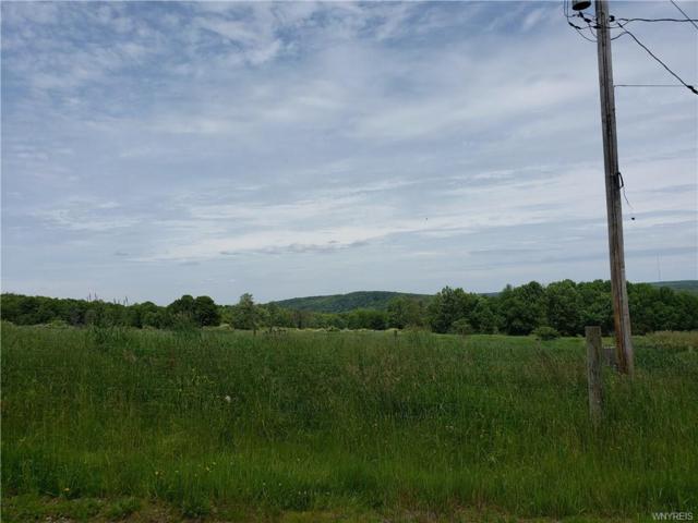V/L Murray Hill Road, Colden, NY 14033 (MLS #B1204862) :: Robert PiazzaPalotto Sold Team