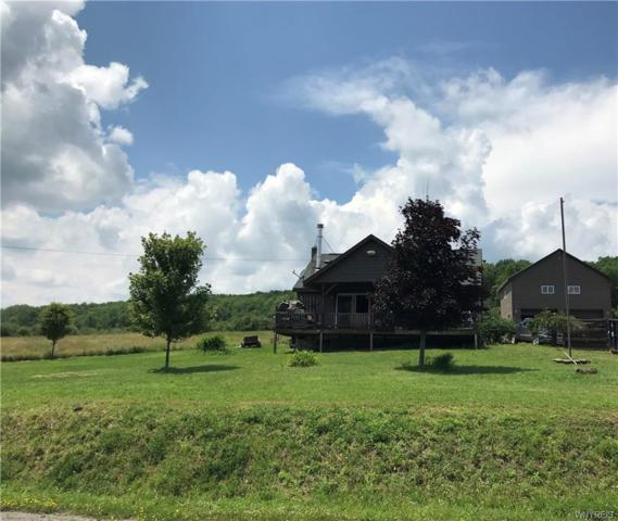 8781 Old State Road, Allen, NY 14709 (MLS #B1209887) :: Robert PiazzaPalotto Sold Team