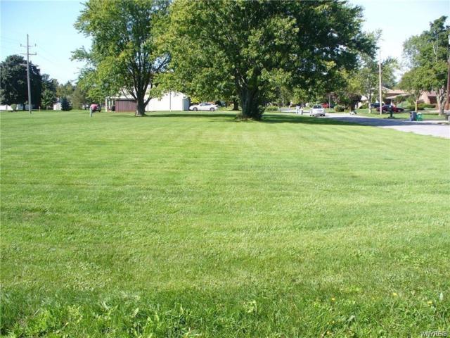 1000 Erna Drive, Lockport-Town, NY 14094 (MLS #B1209913) :: Robert PiazzaPalotto Sold Team