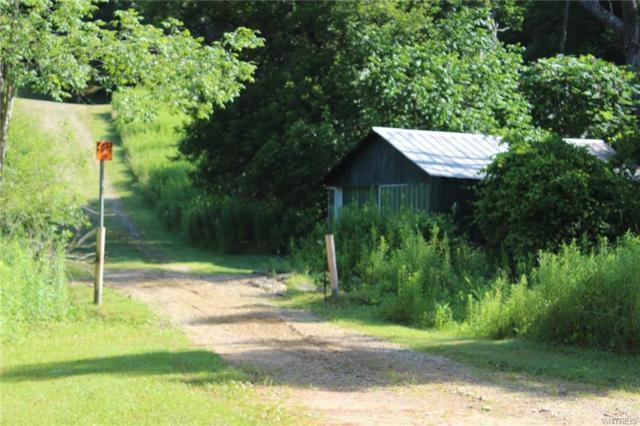 6216 Beers Hollow Road, Bolivar, NY 14715 (MLS #B1210217) :: MyTown Realty